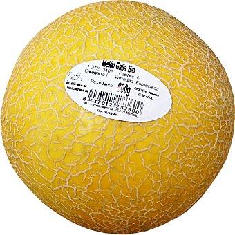 ECOLÓGICO Melón galia  Pieza 800 g