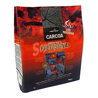 Carbón profesional 5 kg