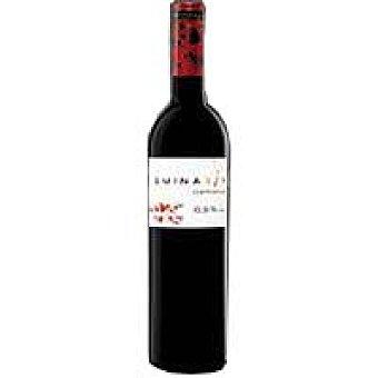 Eminasin Vino Tinto Botella 75 cl