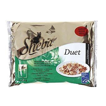 Sheba Duet mousse mixto de pollo-trucha para gatos Pack 4x85 g
