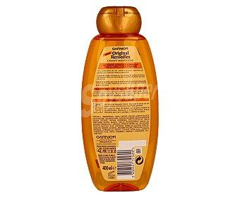 Garnier Champú maravilloso con aceites de argán y camelia para cabello seco y apagado (nutre, suaviza y realza el brillo) 400 mililitros