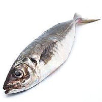Chicharro blanco del País Vasco 1 kg