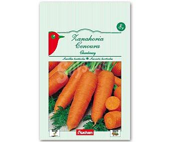 Auchan Semillas para sembrar zanahorias de la variedad Chantenay Semillas Zanahoria