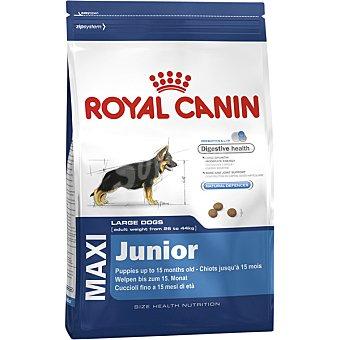 Royal Canin Maxi junior pienso para perros cachorros -15 meses de razas grandes bolsa 4 kg 26-44 kg