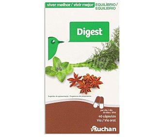 Auchan Digest (complemento alimenticio) 40 unidades