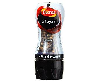 Ducros Ducros Molinillo 5 Bayas 24 g