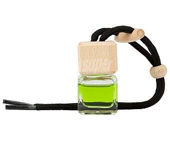 Paradise scents Ambientador coche manzana en frasco colgante decorativo, cordón negro scents