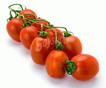 HORTALIZA Tomate pimiento tarrina 225 Gramos