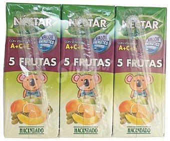 Hacendado Nectar 5 frutas (platano, mandarina, naranja, manzana y uva) Pack de 6x200cc