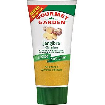 Gourmet Garden Jenjibre listo para usar Tubo 80 g