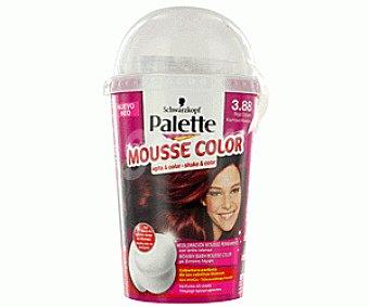 Palette Schwarzkopf Tinte Rojo Oscuro Nº3.88 Mousse Color 1 Unidad