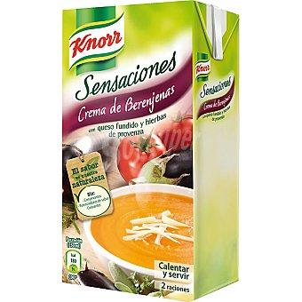 Knorr Crema de berenjenas con queso fundido Brik 500 ml