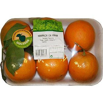 Naranjas en rama bandeja 1,8 peso aproximado bandeja 1,8 kg