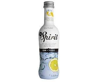 Mg Spirit Gin Tonic 275 mililitros