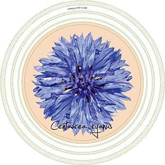 KELSEN Joyfull Flowers Galletas de Mantequilla Lata Lata 400 g