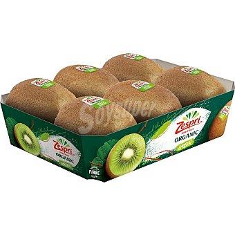 Zespri Kiwi verde ecológico peso aproximado Bandeja 600 g