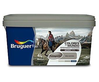 BRUGUER Pintura plástica monocapa de interior, de color gris perla Patagonia y acabado natural, de la serie Colores del mundo 4 litros