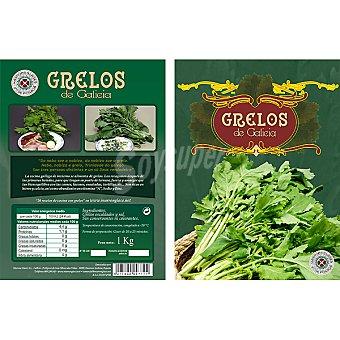 JOSE POSADA Grelos de Galicia Bolsa 1 kg