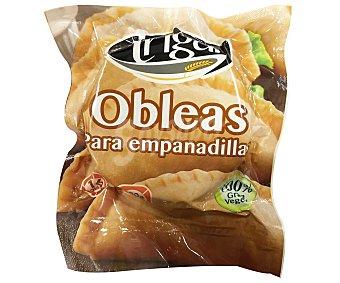 Trigal Masa de empanadillas Bolsa 375 gr (16 uds)