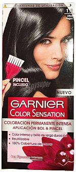 Garnier Tinte coloración permanente sensation Nº 1.0 ultra negro 1 unidad