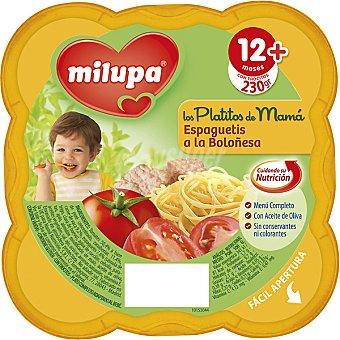 Milupa Miluchef Tarrito espaguetis a la boloñesa a partir de 12 meses Envase 230 g