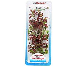 RED LUDWIGIA Planta Plástico 23Cms. 1 Unidad