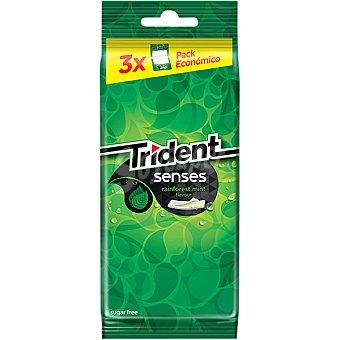 Trident Sandía chicles sin azúcar Pack 2 envase 14 unidades