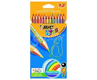 Bic Caja con 12 lápices para colorear, con mina extra dura 1 unidad