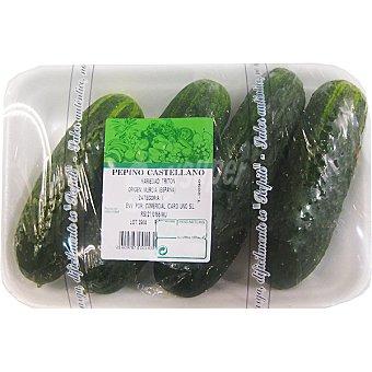 Pepino español (corto) peso aproximado Bandeja 1,2 kg