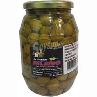 Hilario Aceitunas sabor manzanilla Tarro 500 g
