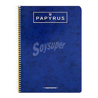 Unipapel Cuaderno 4º papyrus