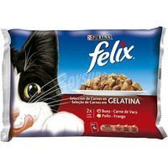 Purina Felix Alimento Pack 4x100 g