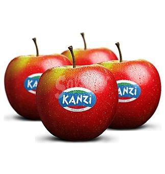 Kanzi Manzana aprox 4 unidades 800g