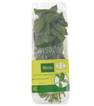 Carrefour Menta cortada fresca Bolsa de 20 g