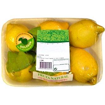 Limones en rama peso aproximado Bandeja 1 kg