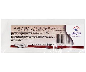 Delfín Almeja Blanca Escaldada 60/80 Piezas 500 Gramos