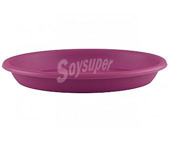 VAN Plato circular de plástico de color magenta 1 Unidad