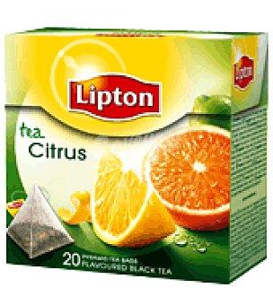 Lipton Té citrus Caja de 20 unidades