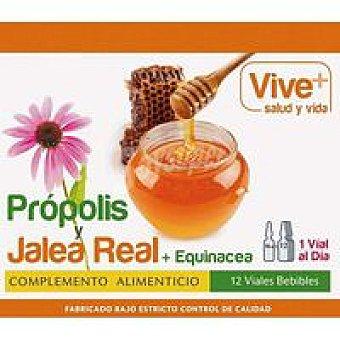 Vive+ Propolis y Jalea Real + Equinacea 12 u