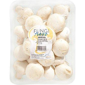 Fungi fresc Champiñón entero Bandeja 500 g