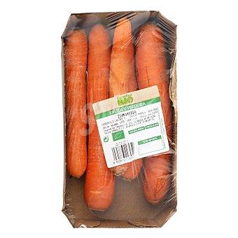 Carrefour Bio Zanahoria ecológica Bolsa 400 g