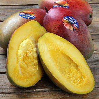 Mango Bandeja de 1000 g peso aprox.