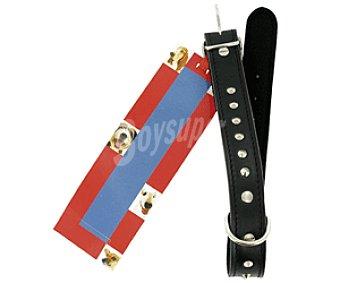 Arppe Collar de Cuero Fieltro Fornitura 55cm para Perro Mediano 1 Unidad