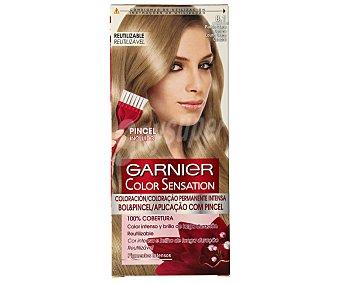 Color Sensation Garnier Tinte rubio claro ceniza nº 8.1 coloración permanente  Caja 1 unidad