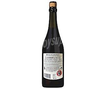 MEDICI ERMETE Vino tinto lambrusco frizzante reggiano seco Botella de 75 centilitros