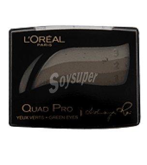 L'Oréal Sombra de ojos quad pro 319 bis 1 sombra de ojos