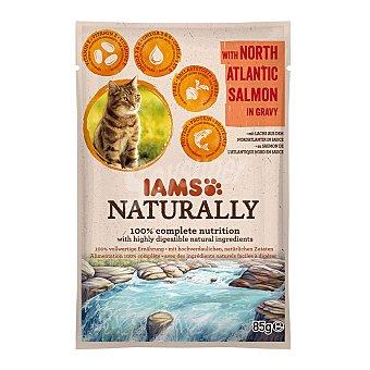IAMS Naturally alimento húmedo para gatos adultos salmón en salsa Envase 85 g