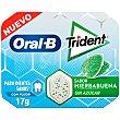 Oral b chicle grageas sabor hierbabuena Paquete 10 uds Trident