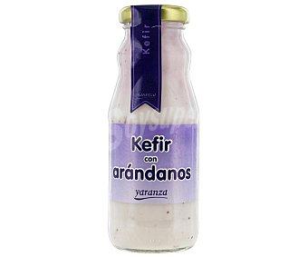 Yaranza Kefir con Arándanos 200 Gramos