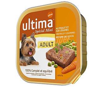 Ultima Affinity Alimento equilibrado Special Mini con pollo y legumbres para perros de raza mini adultos  Tarrina de 150 g